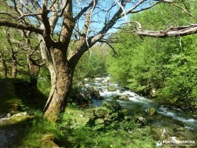 Ruta Cares-Picos de Europa; serra da estrela ruta las xanas monasterio de suso y yuso refugio renclu